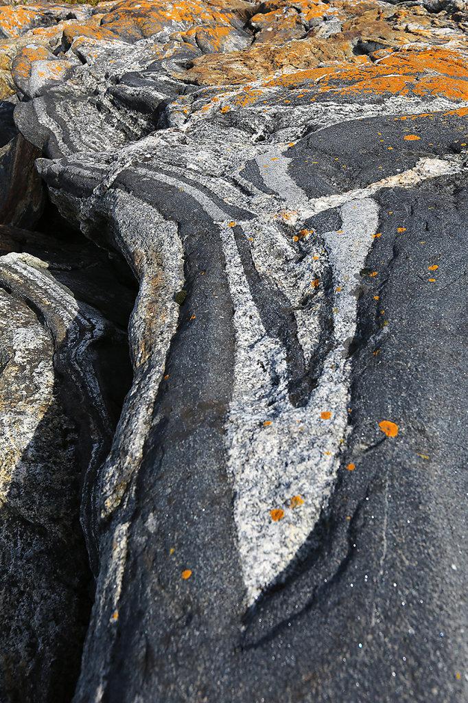 Dali Rocks
